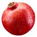 Pomegranate fruit with drops isolated on white mushroom background Royalty Free Stock Photo