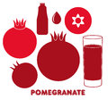Pomegranate isolated objects on white background vector illustration eps Royalty Free Stock Photos