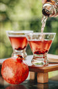 Pomegranate martinis Royalty Free Stock Photo
