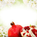 Pomegranate photo of and slice with blossom background Royalty Free Stock Images