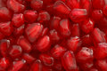 Pomegranate Seeds. Stock Photo