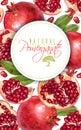 Pomegranate vertical round banner