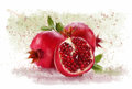 Pomegranate on the white plane and fruit Stock Image