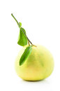 Pomelo fruit on white backgorund Royalty Free Stock Photo