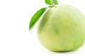Pomelo fruit on white backgorund Stock Image