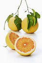 Pomelo grapefruits with stem and leaves cross section Stock Photography