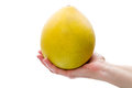 Pomelo in hand isolated on white background Stock Images
