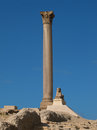 Pompey`s Pillar in Alexandria Royalty Free Stock Photo