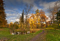 Pond in autumn and beautiful trees the park Royalty Free Stock Images
