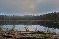 Pond autumnal cold winter morning oppressive view looks like a dead Royalty Free Stock Image