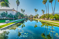 Pond in Balboa park Royalty Free Stock Photo