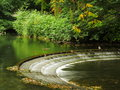 Pond with cascade leaves and ducks autumnal scenery of a water cascading down piled along the edges resting Royalty Free Stock Image