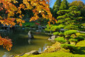 Pond and Fall Foliage in Japanese Garden Royalty Free Stock Photo
