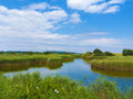 Pond in the fen landscape with middle of Royalty Free Stock Photo