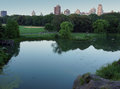 Pond and field in Central Park Royalty Free Stock Photo