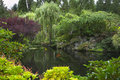 Pond in a garden. Stock Photos