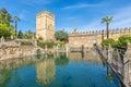 Pond in gardens of Alcazar of the Christian Monarchs in Cordoba Royalty Free Stock Photo