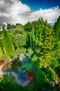 Pond in landscaped garden scenic view of plant with green plants and trees Royalty Free Stock Photos