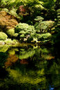 Pond Reflections of Arboretum Trees Royalty Free Stock Photo