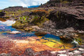 Pond on Roraima Tepui Summit, Gran Sabana, Venezuela Royalty Free Stock Photo