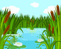 Pond scene illustration of a Royalty Free Stock Photography