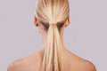 Ponytail a perfect with long blonde hair Royalty Free Stock Photo