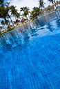 Pool with blue water palms lounges Royalty Free Stock Photo