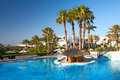 Pool with palm trees Royalty Free Stock Photo