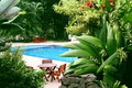 Pool in tropical setting Royalty Free Stock Photo