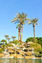 Pool of water with row of palm trees fountain over boulders Stock Photography