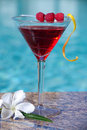 Poolside Raspberry Cosmopolitan Royalty Free Stock Photo