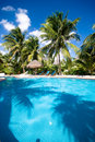 Poolside at a Tropical resort Stock Images