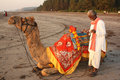 A poor indian man with his camel waiting for customers for his camel ride on a beach on an evening Royalty Free Stock Images