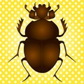 Pop art vector. Egyptian Scarab beetle. Brown color on vintage background Royalty Free Stock Photo