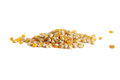 Popcorn kernels isolated pile of on a white background Royalty Free Stock Photos