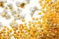 Popcorn and kernels ready made Royalty Free Stock Photo