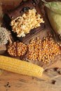 Popcorn and yellow dry corn grain with fresh corn. Royalty Free Stock Photo