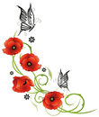 Poppies flowers floral tendril with and butterflies Royalty Free Stock Photo