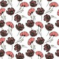 Poppies. Seamless hand drawn pattern for the design Royalty Free Stock Photo