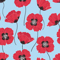 Poppy background seamless floral pattern with red poppies Stock Photos