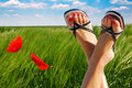 Poppy and feet in a blue sky Royalty Free Stock Photography