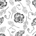 Poppy flower, bud, leaf vector engraving sketch hand drawn isolated on white, seamless pattern, vintage romantic style Royalty Free Stock Photo