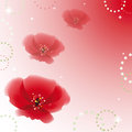 Poppy flowers on colorful background vector illustration Stock Photos