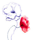 Poppy flowers original watercolor illustration Stock Photo