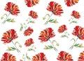 Poppy seamless pattern on the white backround