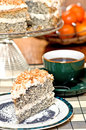 Poppy seed cake Royalty Free Stock Photography