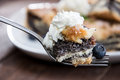Poppy seed cake on a fork with blueberry Stock Photography