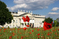 Poppy seed field in frint of the Fridericianum in Royalty Free Stock Image