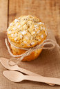 Poppy seed muffin in rustic style Royalty Free Stock Photo