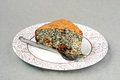 Poppy seed and nut cake with raisin Royalty Free Stock Photography